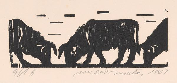 Ernest Zmeták – O troch býkoch