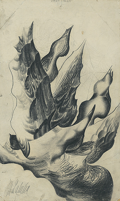 Milan Laluha – Starý strom