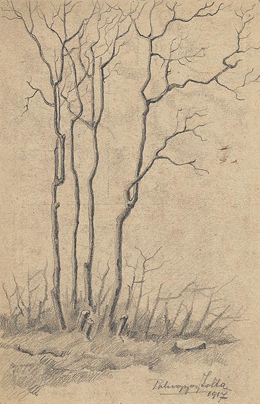 Zolo Palugyay – Štúdia stromov