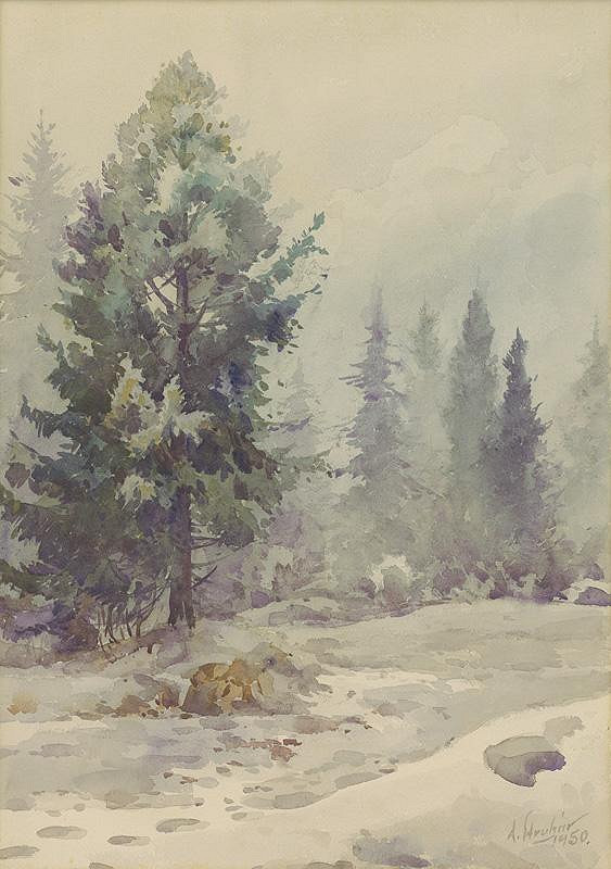 Alojz Struhár - Zima v Oraviciach