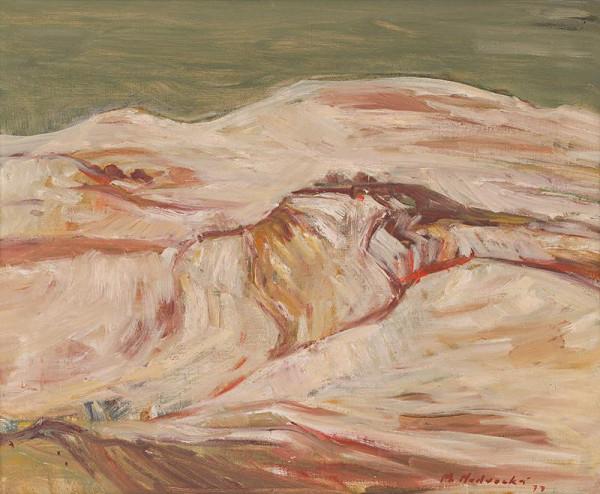 Mária Medvecká – Orava v bielom
