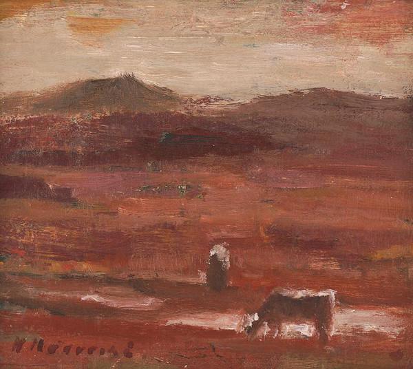 Mária Medvecká – Červená zem