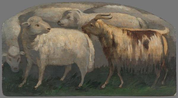 Maximilián Ratskay – Ovce