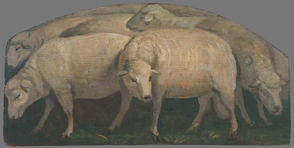 Maximilián Ratskay - Ovce