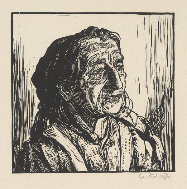 Jaroslav Vodrážka – Žena z Netolíc