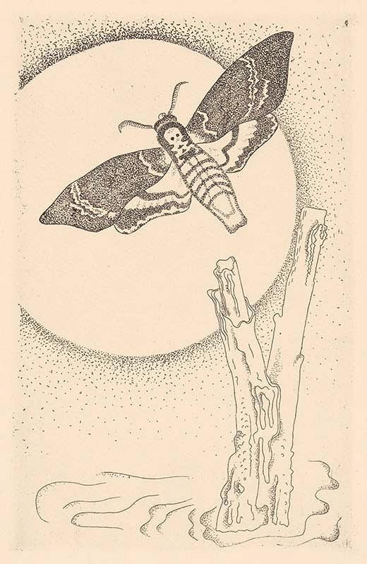 Mikuláš Galanda – Ilustrácia 4. k Máchovmu Máju