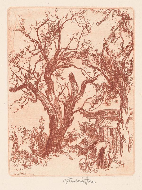 Jaroslav Vodrážka - Suchý strom