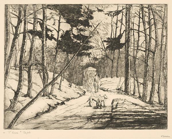 Anton Djuračka - V lese II.