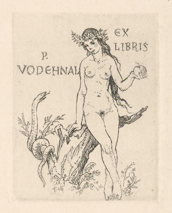 Jaroslav Vodrážka - Ex libris P. Vodehnal