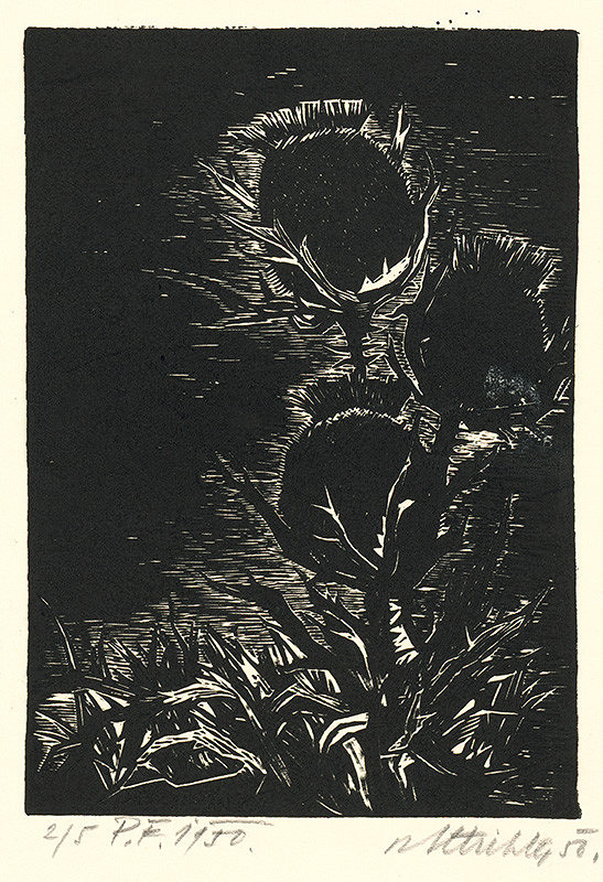Rudolf Altrichter – Bodliače PF - 1950