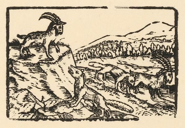 Nemecký grafik z 2. polovice 16. storočia – Kamzík a líška