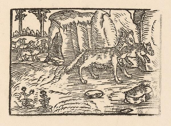 Nemecký grafik z 2. polovice 16. storočia - O vlku a baranovi