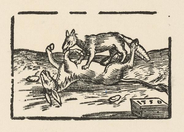 Nemecký grafik z 2. polovice 16. storočia - Trinásta fabula o chorom somárovi a o vlkovi