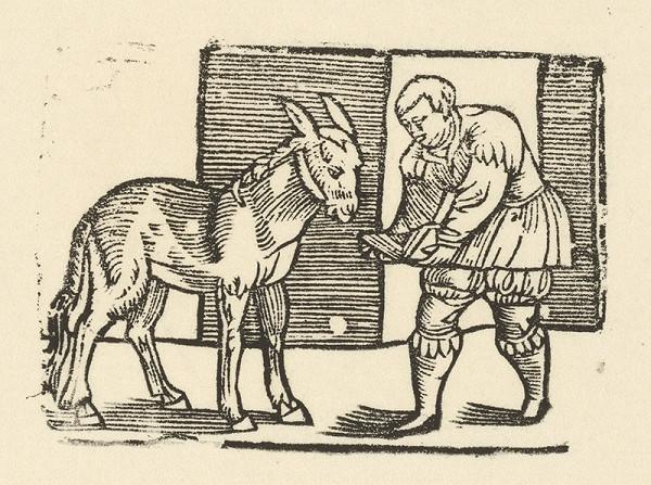 Nemecký grafik z polovice 16. storočia – Enšpígl učí somára čítať