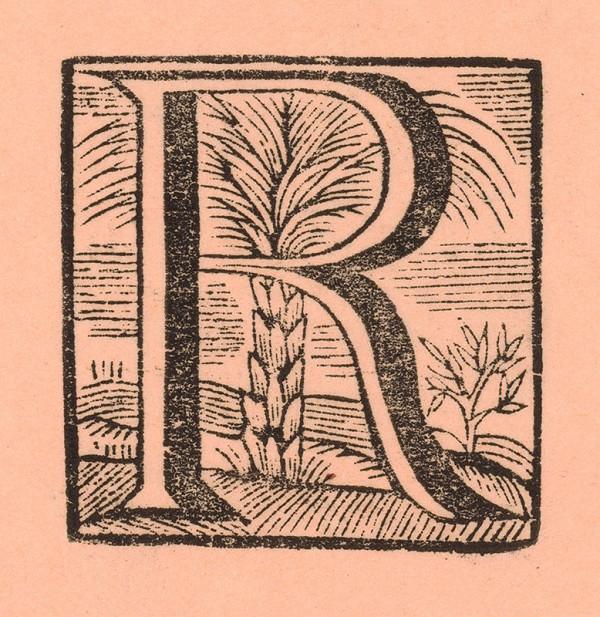 Moravský grafik zo začiatku 18. storočia – Iniciála R