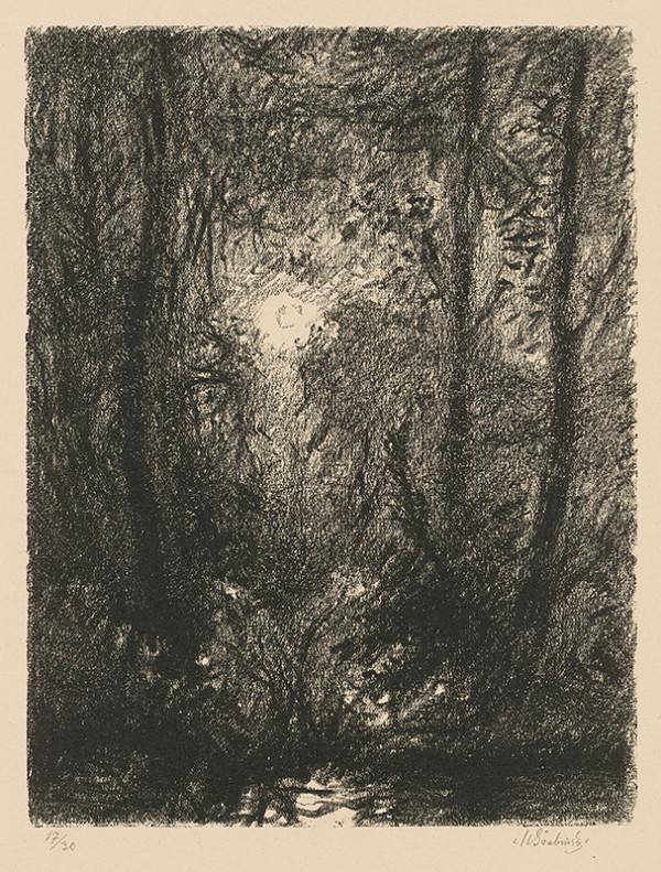 Max Švabinský - Mesiac v lese