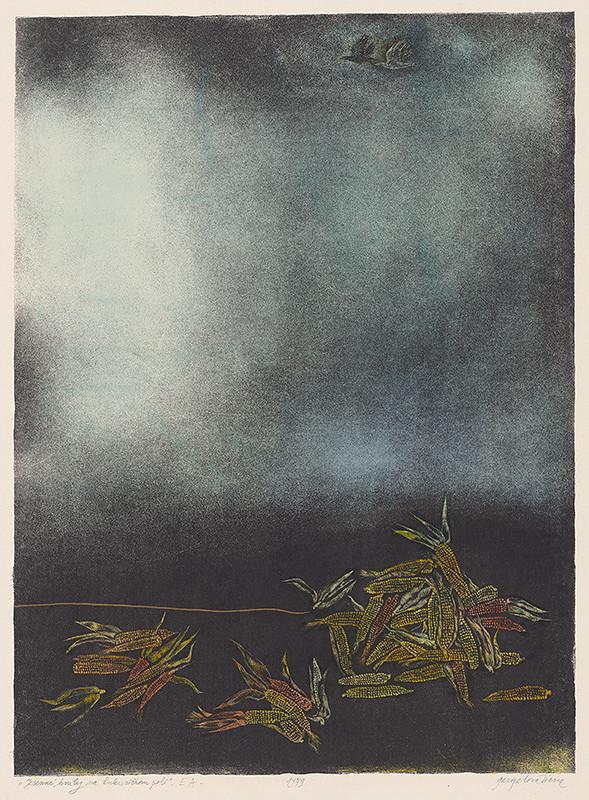 Viera Gergeľová - Jesenné hmly na kukuričnom poli