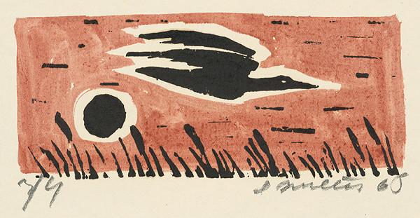 Ernest Zmeták - Letiaci vták