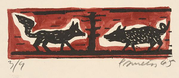 Ernest Zmeták - Diviak a líška