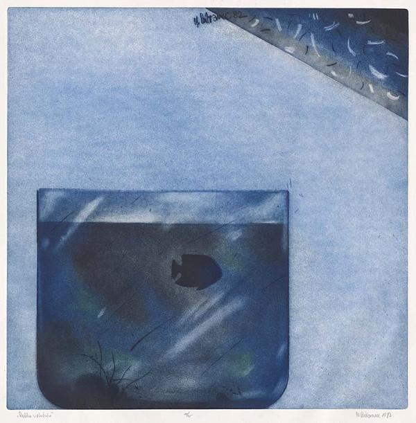 Marcel Dúbravec – Rybka v akváriu