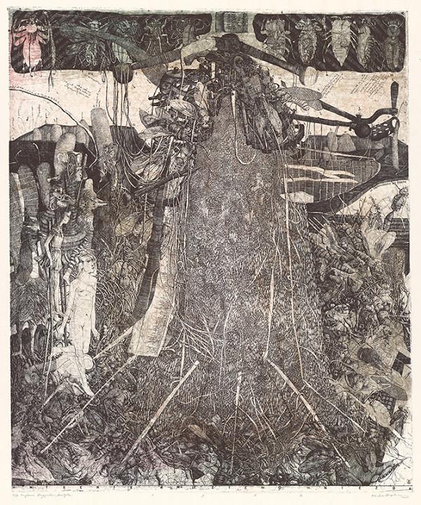 Dušan Kállay – Hmýrenie hmyzieho hniezda