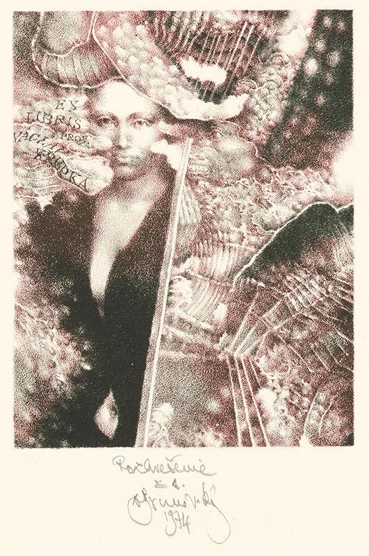 Albín Brunovský - Ex libris V.Křupka