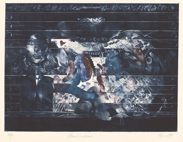 Róbert Brun – Dáma v modrom