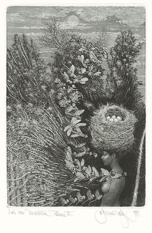 Albín Brunovský – Chvála zamotaných snov VI., 1984, Stredoslovenská galéria