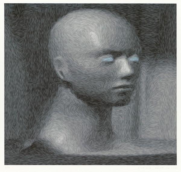 Vladimír Havrilla – Van Gogh