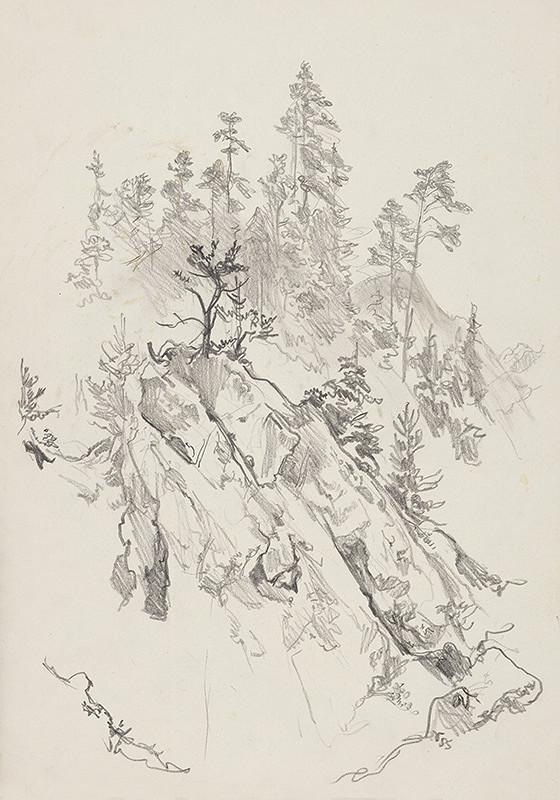 Jaroslav Vodrážka – Skala v lese