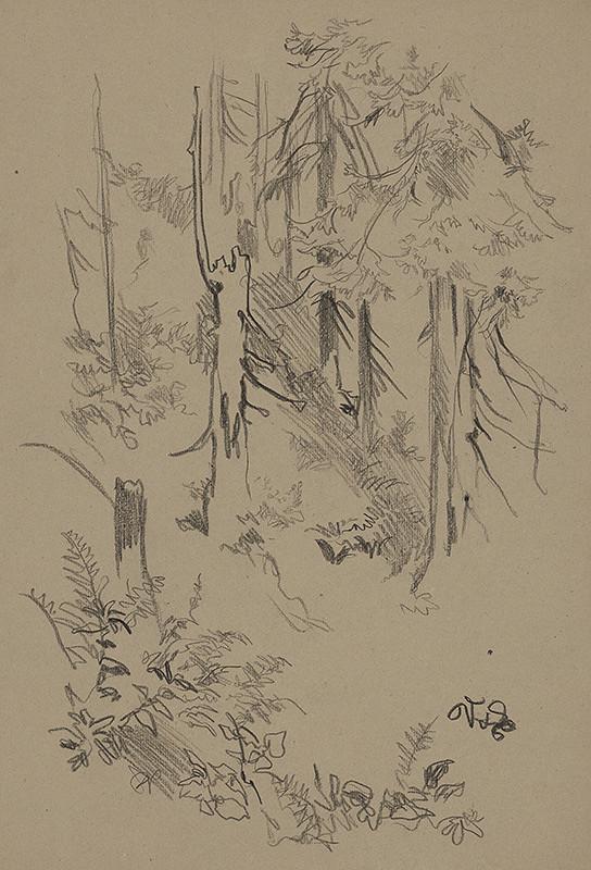Jaroslav Vodrážka - Vnútro lesa