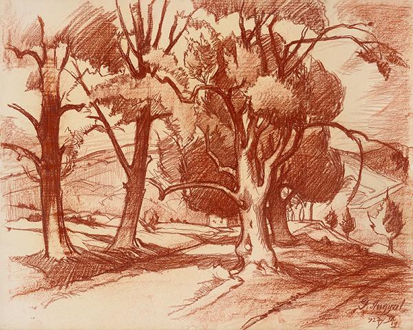 Gejza Angyal - Krajina so stromami I.