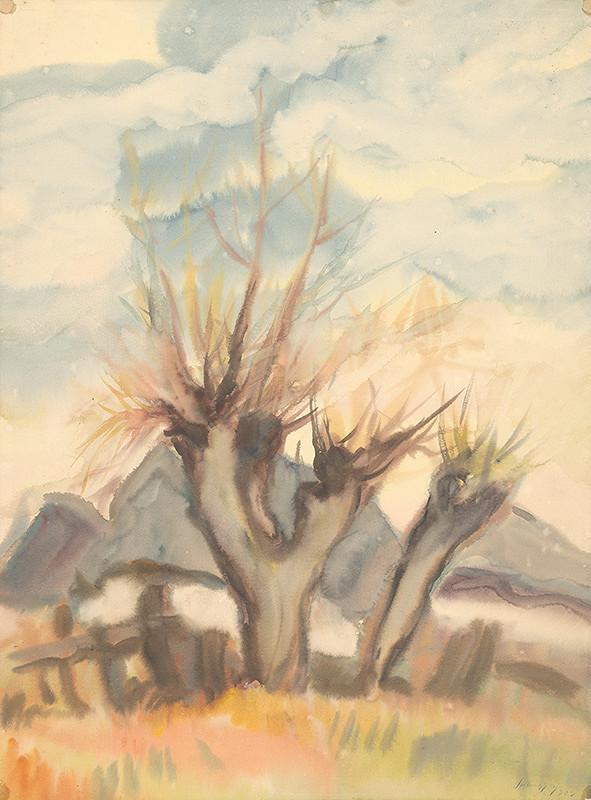 Zolo Palugyay - Vŕby pri dedine