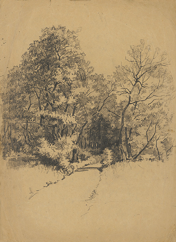 František Gyurkovits - Lesná cesta