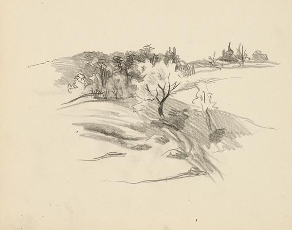 Ján Novák - Štúdia stromov