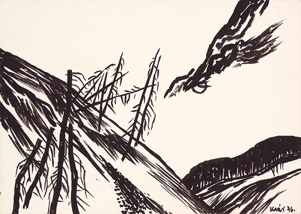 Fero Kráľ – Skamenelé stromy