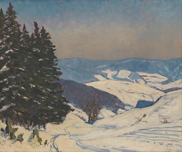 Jozef Kollár – Zima