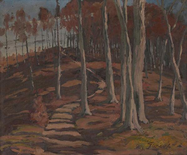 Edmund Gwerk – Krajina - november 1923