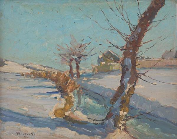 František Gyurkovits - Krajina v zime