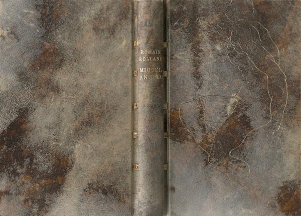 Jan Vrtílek - Romain Rolland - Michelangelo
