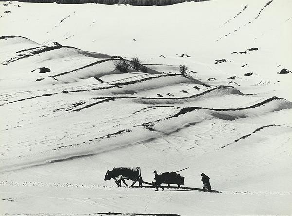 Martin Martinček - Robota v poliach na konci zimy