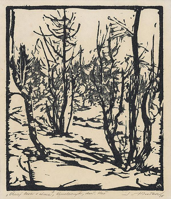 Július Muška – Okraj lesa v zime