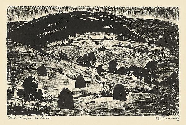Július Bukovinský - Krajina zo Šariša