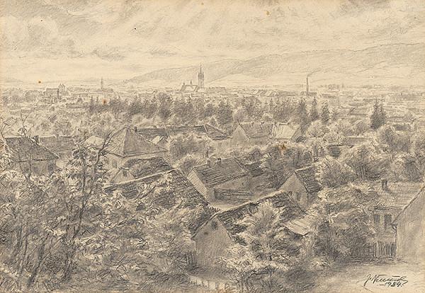 Jan Němeček – Pohľad na Prešov