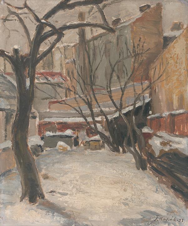 Štefan Hapák – Zima v meste