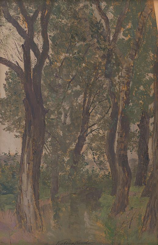 Ferdinand Katona – Štúdia stromov