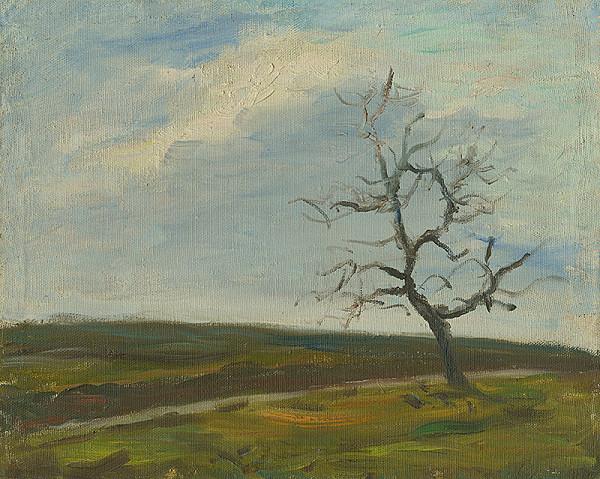 Anton Sučka - Jesenné pole