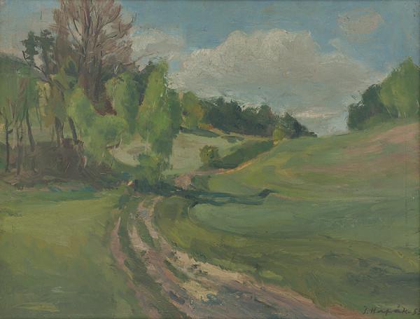 Štefan Hapák – Poľná cesta