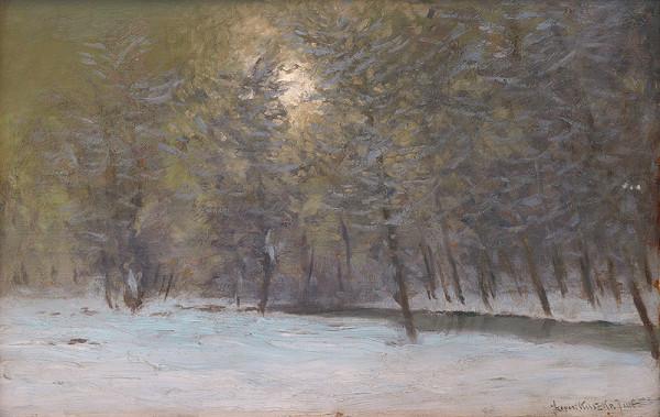 Eugen Szepesi-Kuszka - Les v zime