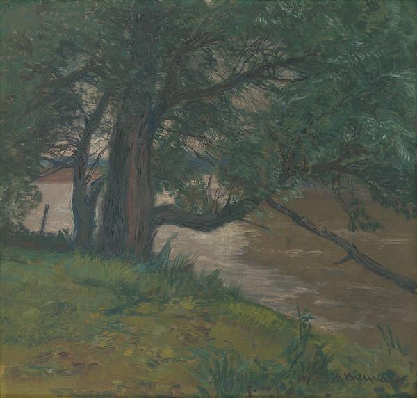 Martin Benka - Pri rieke
